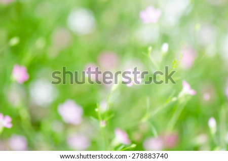 blurred flower background, abstract blur background. - stock photo