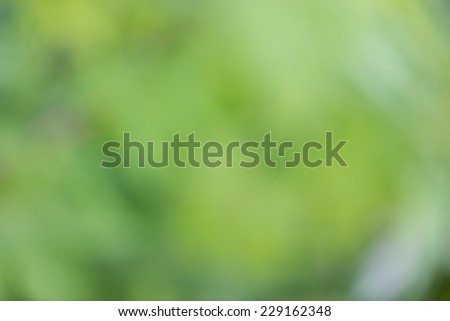 Blurred green background - stock photo