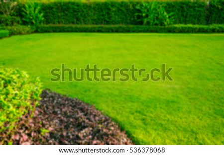 Blurred green lawn,garden landscape design