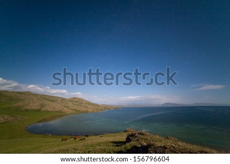 Blurred horses grazing at night near the lake Song Kul, Tien Shan, Kyrgyzstan - stock photo