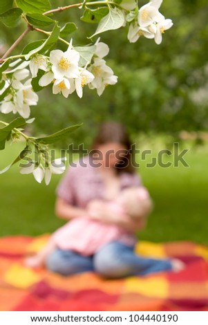 Blurred image of a woman breast-feeding a baby. Selective focus on the flowers of jasmine. Unity with nature. Summer holiday. - stock photo