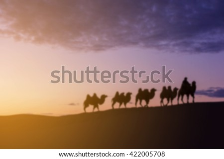 Blurred image twilight of caravan camel on sand dune from mongolia