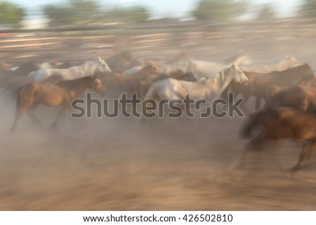 Blurred image without focus herd of horses in motion. Guides in the stall. - stock photo