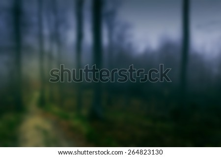 Blurred magical background with forest for web usage - stock photo