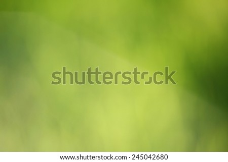 Blurred nature background, summer color - stock photo