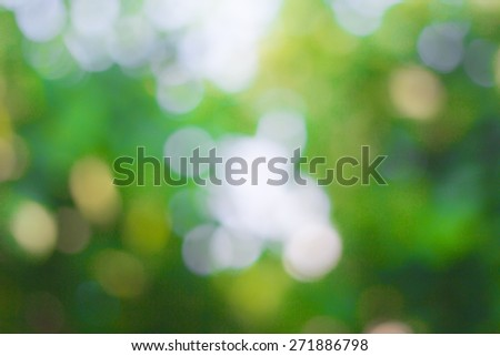 Blurred nature backgrounds,blurred backgrounds concept. - stock photo
