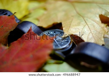 Blurred objects on the background of autumn leaves. Abstract background.