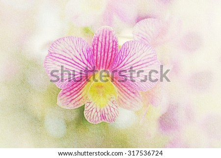 blurred purple  orchid with grunge paper texture - stock photo