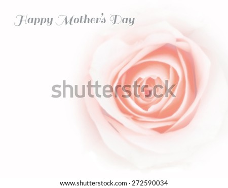 Blurred soft style pale pink rose with vignette and iris blur with texts and copy space for mothers day card : Happy mother's day: Mothering Sunday greeting creative design concept: I love you mom  - stock photo