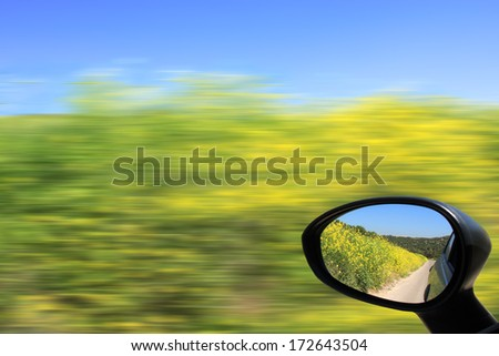 Blurred yellow and green flowers under blue sky as seen from fast moving car. - stock photo