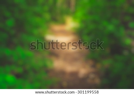 Blurry background dirt path trough forest, bushes. Nature shot, predominant colors green and brown. - stock photo