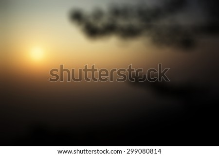blurry view, out of focus view, out of eyes sight view with tree and sky natural, nature in the forest can be a background - stock photo