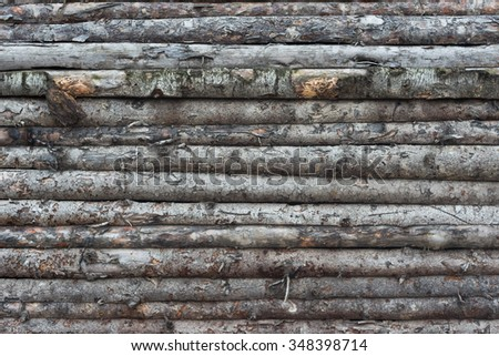 boards with bark
