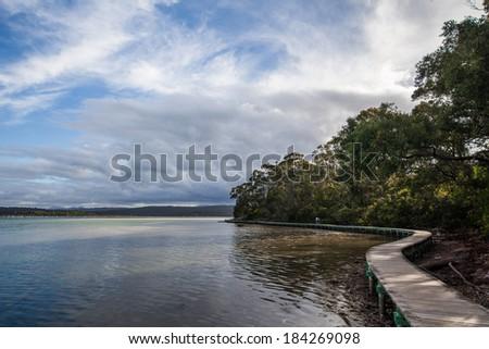 Boardwalk among Mangroves in Merimbula Lake, Victoria, Australia. - stock photo