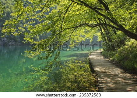 Boardwalk in the forest -Plitvice - stock photo