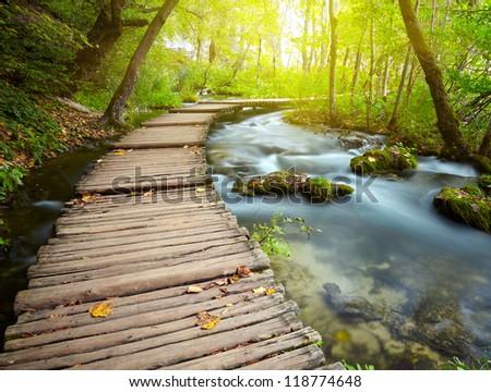 Boardwalk in the park - stock photo