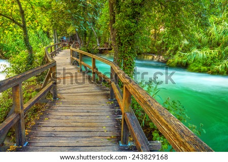 Boardwalk in the park - stock photo