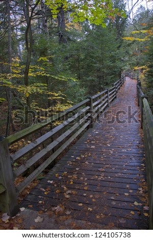 Boardwalk through autumnal woods after rainstorm - stock photo