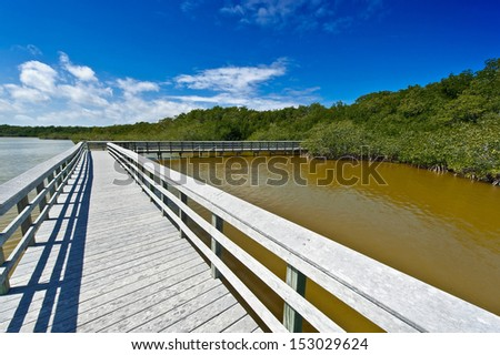boardwalk through the everglades 02 - stock photo