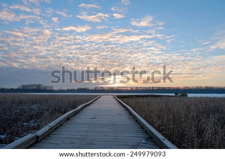 Boardwalk toward minnesota river across wetlands of minnesota valley wildlife refuge in bloomington