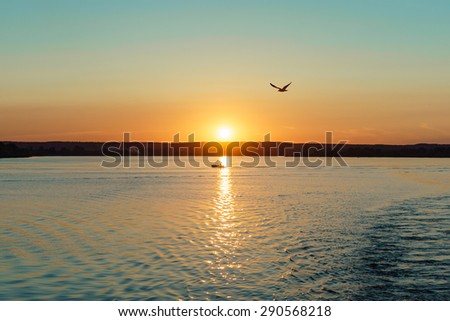 Boat in the glow of the evening sun and a flying seagull - stock photo