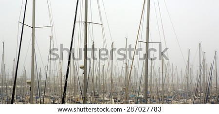 Boat masts in the harbor.