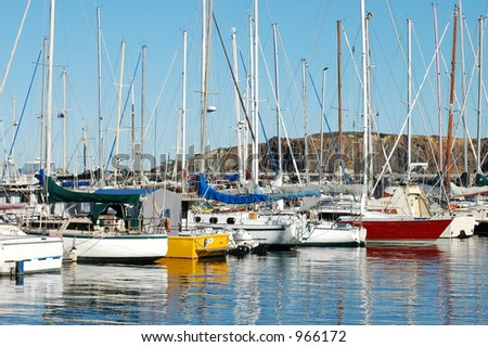 Boats Docked in Marina on the mid north coast of Australia