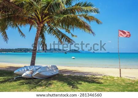 Boats near coconut palm on a tropical sandy beach - stock photo
