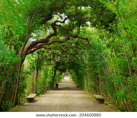Boboli Gardens. Florence Italy - stock photo