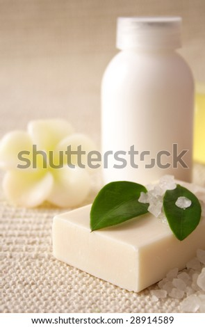 body care products. SPA still life