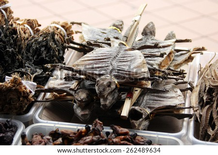 Body of Lizard Dried for Medical Purposes in Chinese Pharmacy in Singapore - stock photo