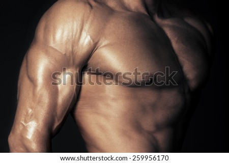 Body of muscular man. Horizontal studio shot - stock photo