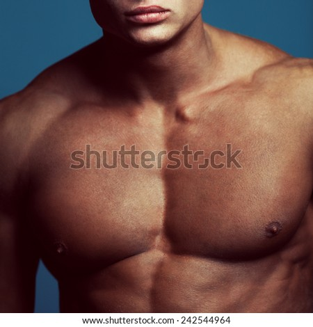 Bodybuilding and body sculpture concept. Beautiful (handsome) muscular male model with perfect body posing over blue background. Close up. Studio shot