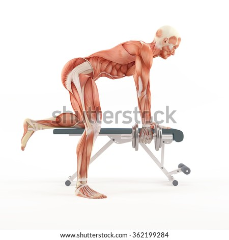 Bodybuilding gym exercising. Tricep Dumbbell Kickback. Triceps Kickbacks. Triceps muscle group. White background, side view