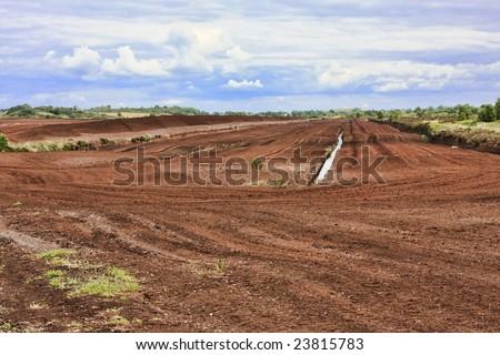Bog field in Ireland. - stock photo