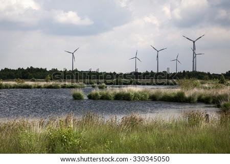 Bog pool with wind farm in background, Bargerveen, Emmen, Drenthe, Netherlands - stock photo
