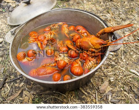 Boiled cancers in a cauldron on a picnic