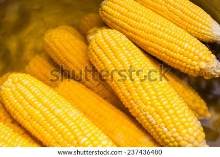 boiled corn - stock photo