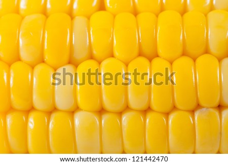 Boiled corn yellow background - stock photo