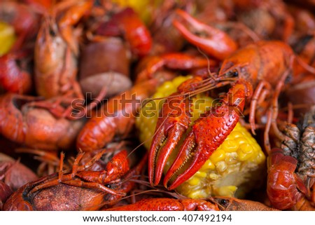 Boiled Crawfish and Corn on the Cob - stock photo