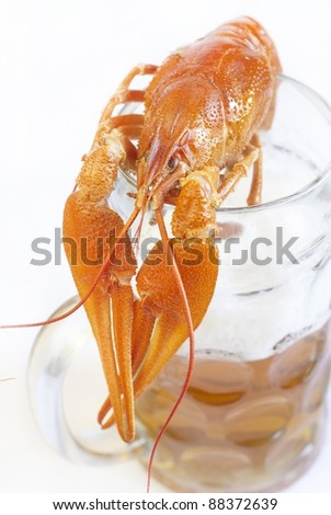 Boiled crawfish with beer - stock photo