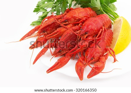 Boiled crayfish in the plate on white background - stock photo