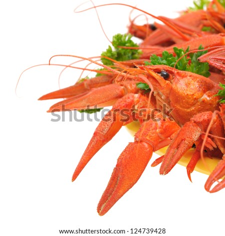 Boiled crayfish on a plate with parsley isolated on white background - stock photo