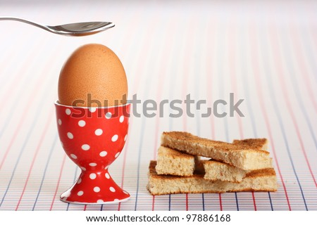Boiled egg and toasted soldiers on a checked background - stock photo
