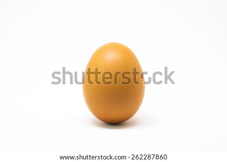 Boiled egg on white background for cook - stock photo