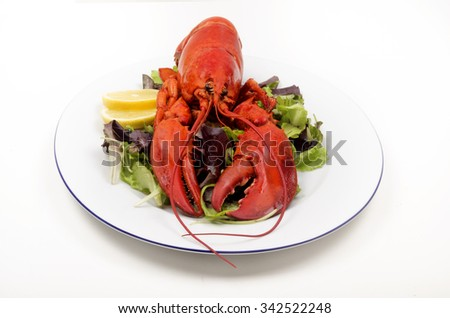 boiled lobster with lemon and salad on a plate - stock photo