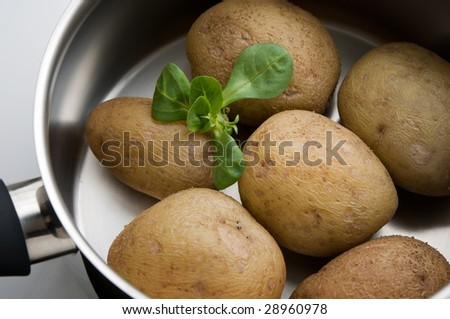 boiled potatoes in a pot with lettuce