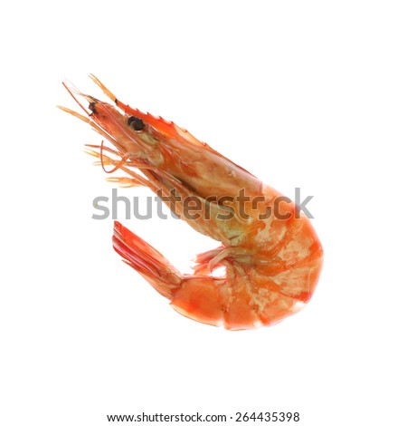 Boiled Shrimp Isolated On White - stock photo
