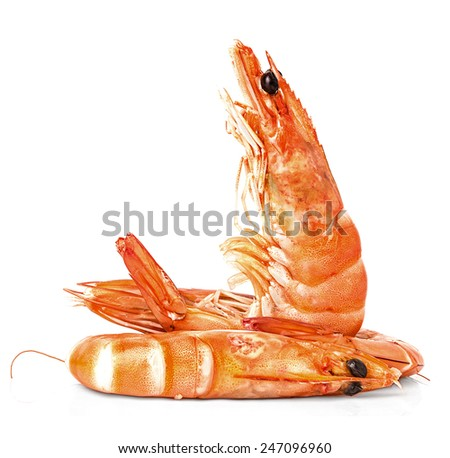 Boiled shrimps isolated on white background; - stock photo