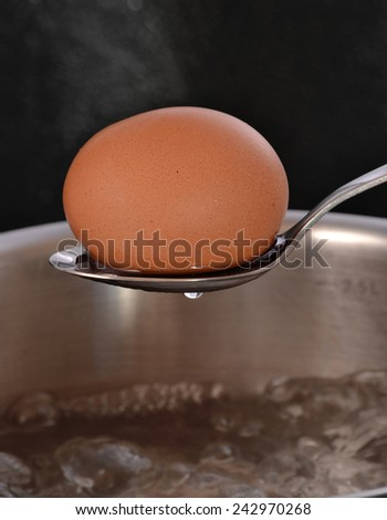 Boiling egg on a pan. - stock photo